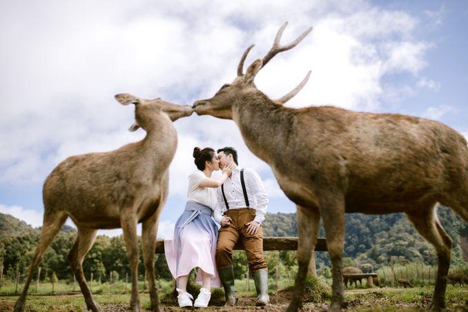 Direktori Fotografer Pernikahan & Vendor Pernikahan Lainnya untuk Melengkapi Hari Bahagia Anda - Bridestory Online Wedding Fair Image 1