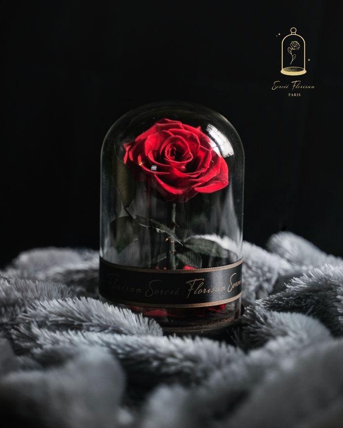 20+ Ide Kado Valentine Istimewa Untuk Yang Tersayang Image 1