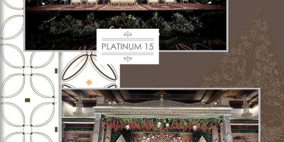 platinum15_16-r1DnjmqFI.jpg