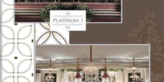 platinum1_2-H14ojXqtU.jpg