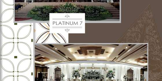 platinum7_8-BkinsmcYI.jpg