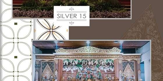 silver15_16-SyiX_mcFL.jpg
