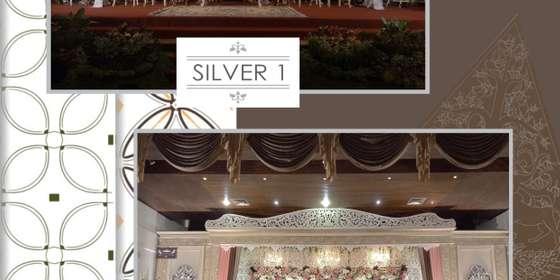 silver1_2-HySXwX9FL.jpg