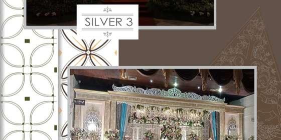 silver3_4-rkOXOm9FU.jpg