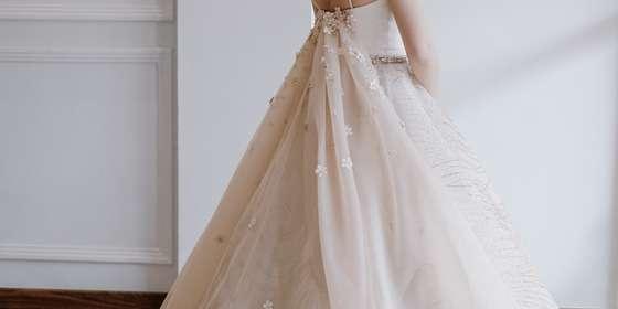 sisters-gown-SJBl42Wwv.jpg