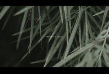 Frenki & Stefi by Aska Project
