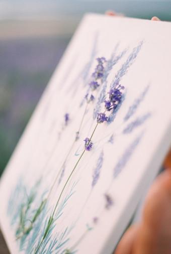 Inspirasi Pemotretan Memesona Di Kebun Lavender - 012