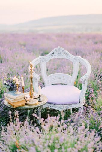 Inspirasi Pemotretan Memesona Di Kebun Lavender - 007