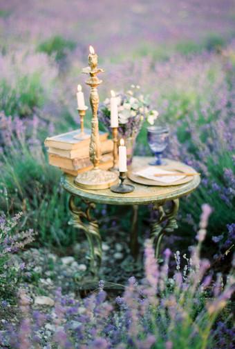 Inspirasi Pemotretan Memesona Di Kebun Lavender - 008