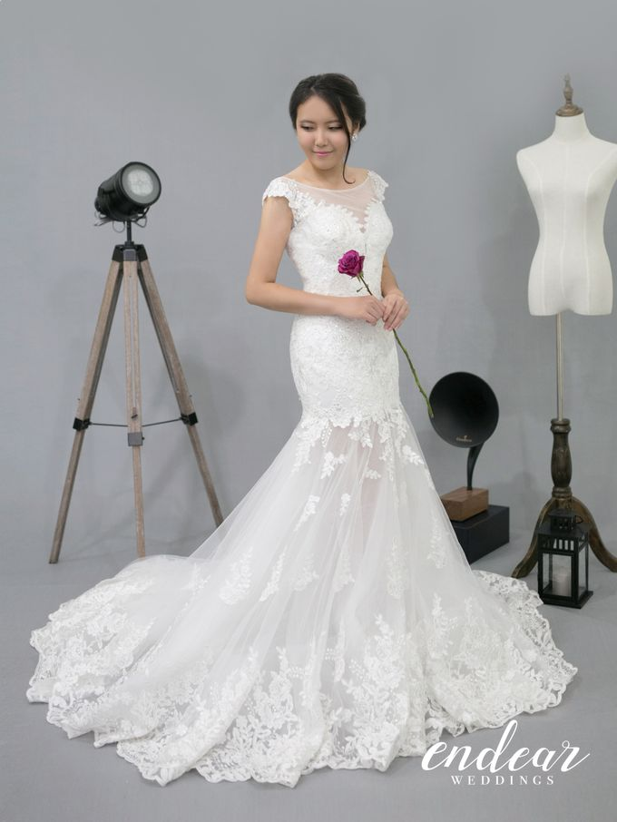 Midnight Garden Wedding Gown Collection by Blossoms Bridal & Occasions - 005