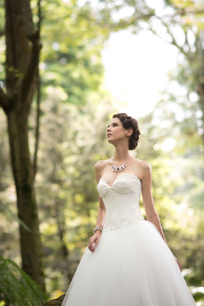 Gown Collection by My Dream Wedding - 039
