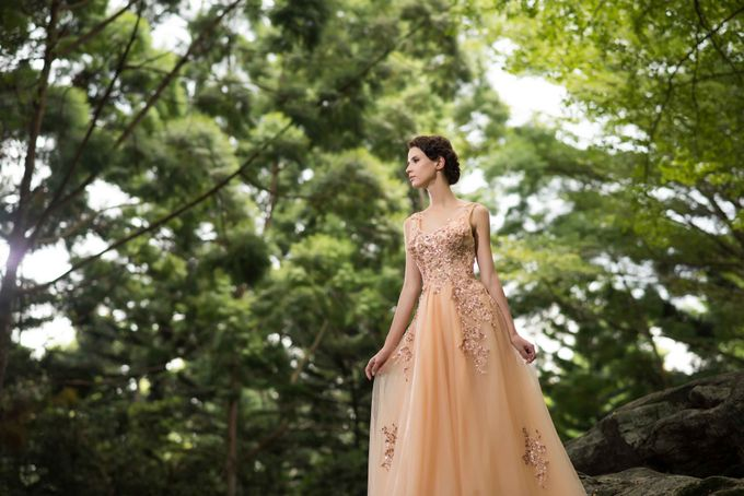 Gown Collection by My Dream Wedding - 046