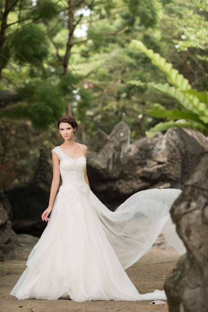 Gown Collection by My Dream Wedding - 048