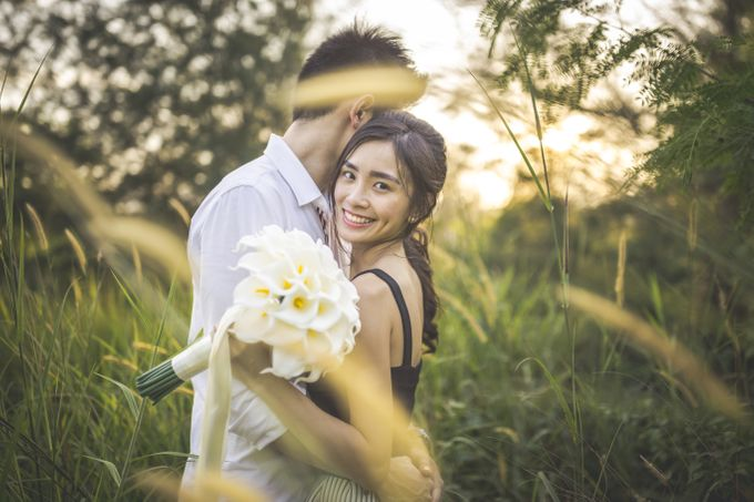 Brandon and Simin by Shane Chua Photography - 002