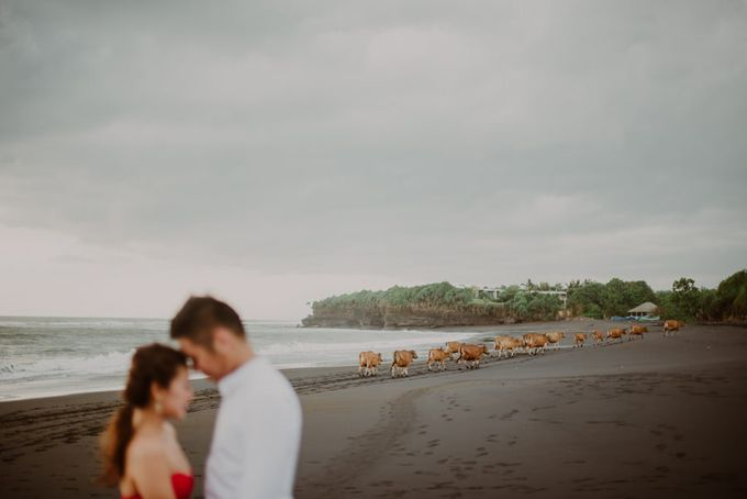 Patrick & Samantha - Wedding at The Edge by Snap Story Pictures - 025