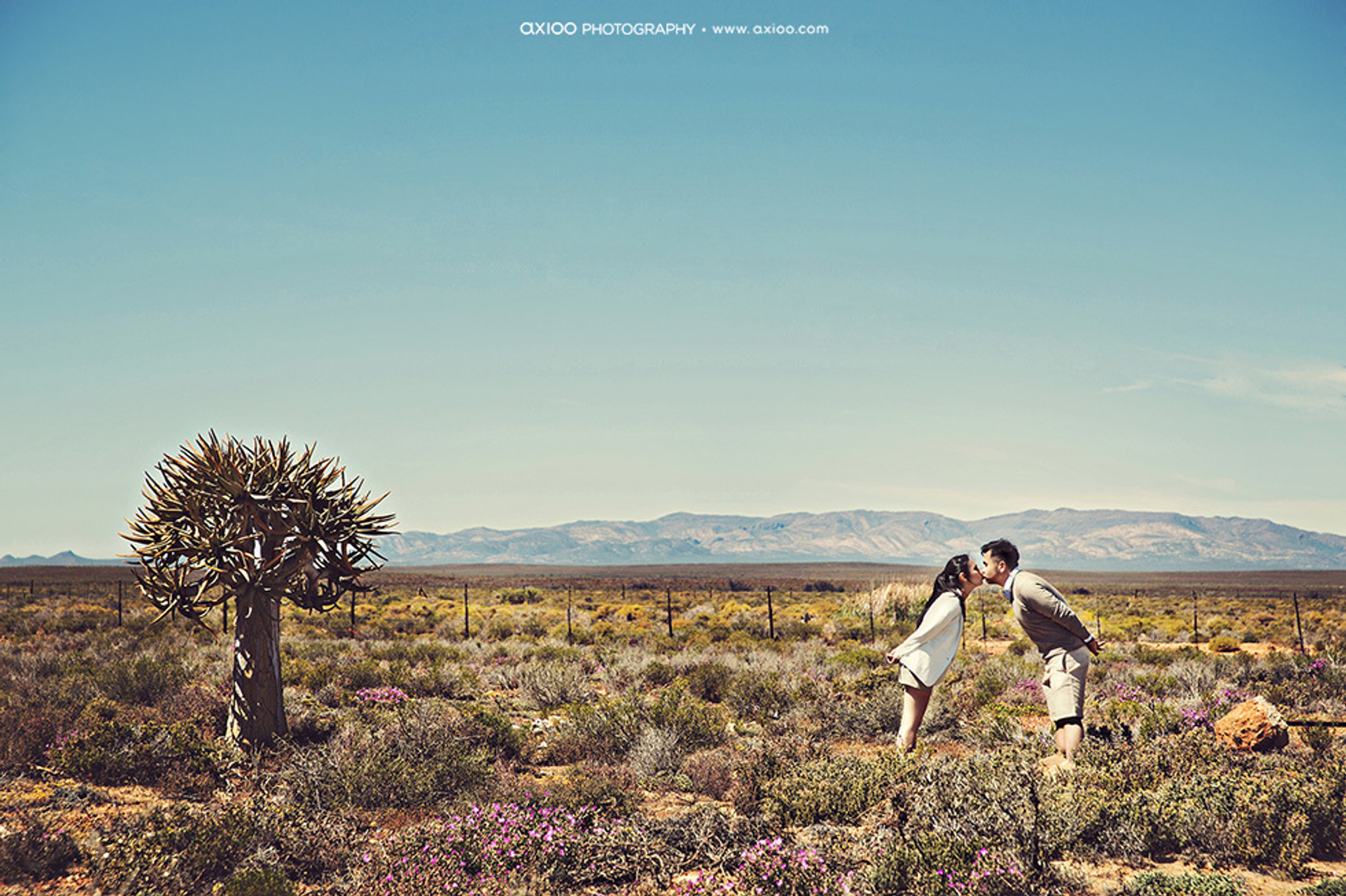 An Adventurous Safari Pre-Wedding Shoot in South Africa
