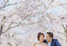 Full Bloom Hokkaido Sakura in Spring-Prewedding Overseas by John15 Photography