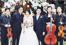 Wedding Performance by VETTA