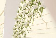 Snow-white wedding by Maria German decor