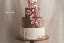 Single tier and multi tiered cakes by Baby Cakes