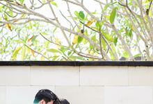Sneak Peek of Avi and Margareth by The Wagyu Story