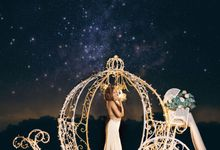 A Fairy Tale Wedding by Zake Productions