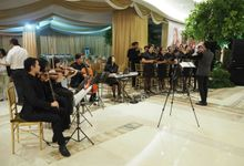 Special Occation by Angelii Vox Choir