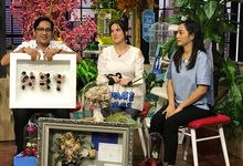 NET TV Pagi pagi Morning Show by Magnolia Dried Flower