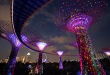 Garden By The Bay Flower Field Hall gardensthe bay | wedding venue in singapore | bridestory
