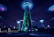 City Scape of Singapore by Luna Bianca Graceful Image Bridal Boutique