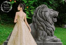 New collection by Odelia Bridal