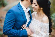 Andrew & Felicia Wedding Day by Venema Pictures
