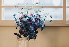Blue Orchids by Liz Florals