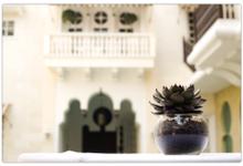 Andalucia and Riyadh Pool by Rumah Maroko