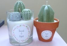 Cactus & Terrarium Candle by Scent and Light