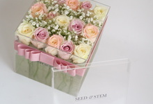 ACRYLIC GLASS #series1 by Seed & Stem