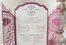 Lovely's Bird Samples by Lovely Bird