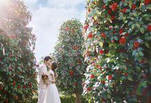 Seoul Studio SS33  Korean Pre-wedding Photography by IDO-WEDDING KOREA