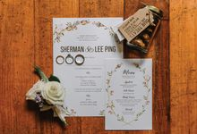 Vol 3 Sherman and Lee Ping by PINE ON PAPER