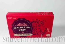 Souvenir Teh Kulit Manggis by Souvenir Herbal
