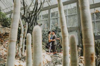 iluminen-rumah-kaktus-bali-botanical-garden-ryEMwWbPQ.jpg